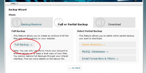 Cpanel Backup wizard 2