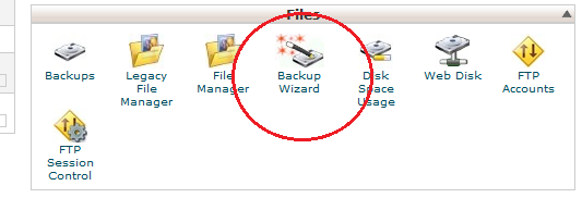 Cpanel Files -> Backup wizard
